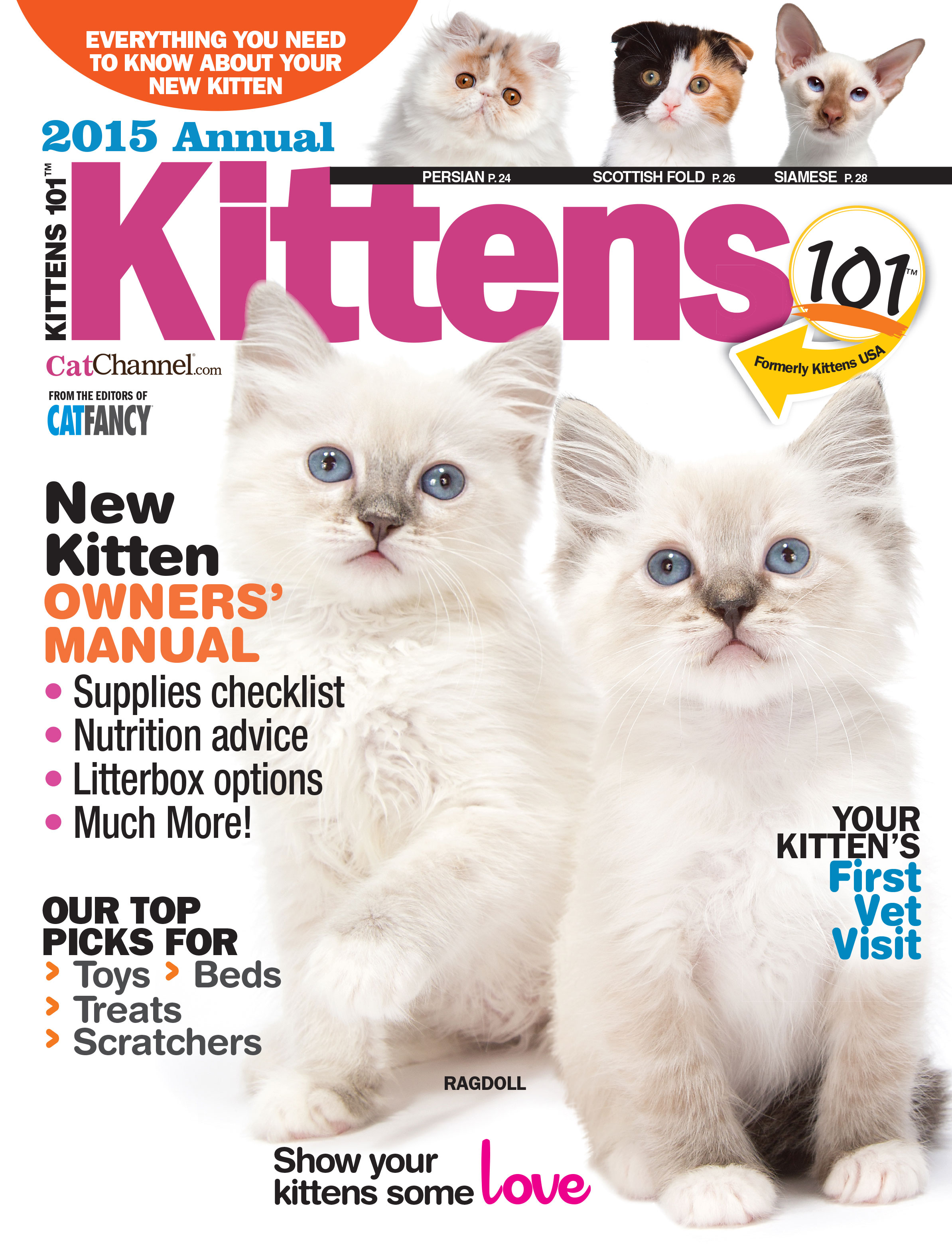 Cats and Kittens | Jackie Brown – Writer, Editor, Content
